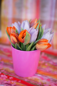 Pink and red tulips in a cup
