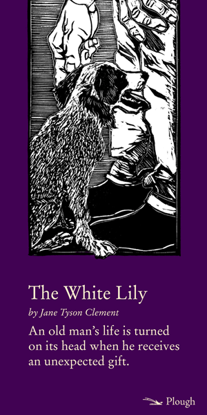 The White Lily, Easter story social sharing image.