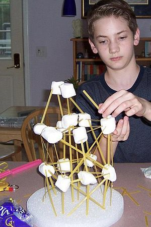 A home-schooled boy building a structure with marshmallows and sticks.