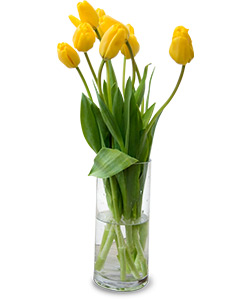 a vase of yellow tulips