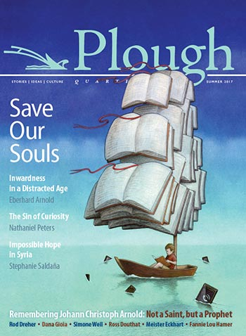 Cover image for Plough Quarterly Issue 13