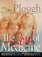 front cover of Plough Quarterly No. 17: The Soul of Medicine