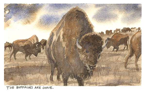 a watercolor painting of buffalo on a prairie